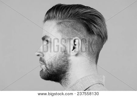 Man With Beard On Unshaven Face Profile. Macho With Stylish Hair, Haircut On Grey Background. Barber