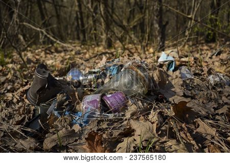 Bottles, Cans And Other Rubbish Scattered In The Forest