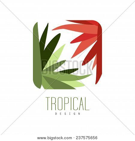 Tropical Logo Design, Square Geometric Badge With Leaves And Flowers Vector Illustration Isolated On