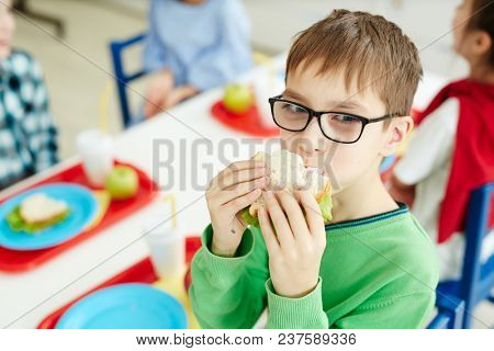 Little Caucasian boy in glasses eating sandwich with appetite while sitting at table with classmates in primary school cafeteria