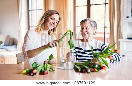 Portrait of an elderly grandmother with an adult granddaughter at home. Women putting flowers in a vase. poster