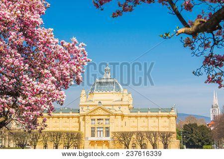 Art Pavilion And Japanese Cherry Blossom In Spring In Zagreb, Croatia, King Tomislav Square