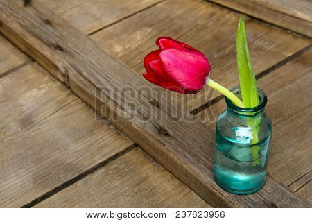 Pink Tulip On Retro Wooden Background, Copy Space