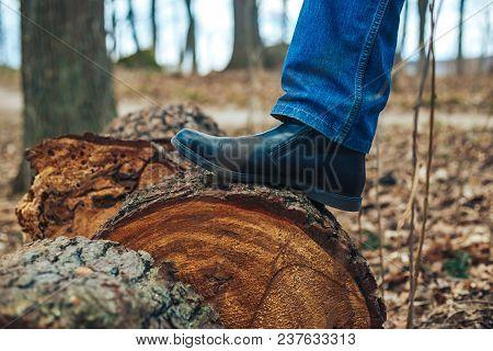 Bearded Man. Lumberjack. The Man Put His Foot On A Cut Tree