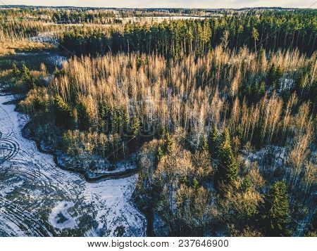 Aerial Photography Of A Forest In Winter - Vintage Look Edit