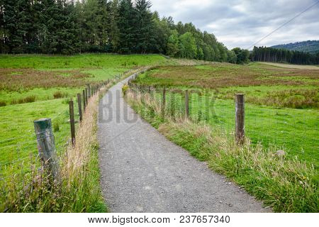 Summer rural landscape with public rights of way brideway or footpath going along pasture in Scotland UK