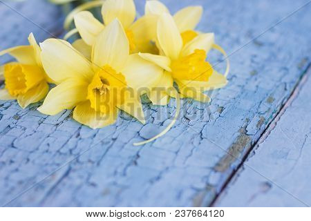 A Bouquet Of Yellow Narcissus On The Wooden Boards