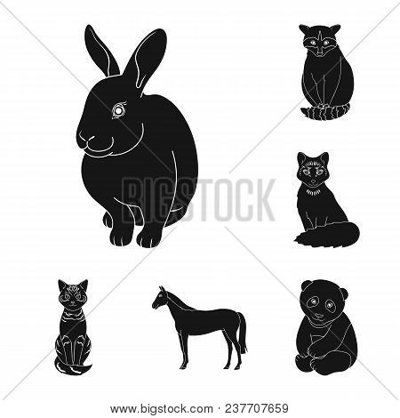 Realistic Animals Black Icons In Set Collection For Design. Wild And Domestic Animals Vector Symbol