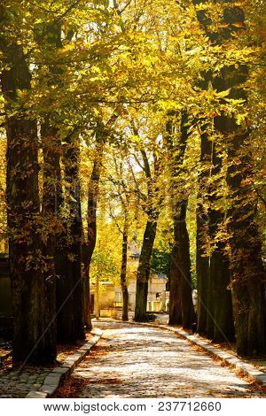 The Pere Lachaise Cemetery in Paris in the fall
