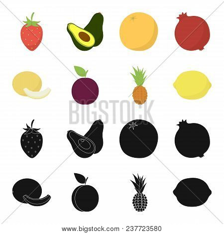 Melon, Plum, Pineapple, Lemon.fruits Set Collection Icons In Black, Cartoon Style Vector Symbol Stoc