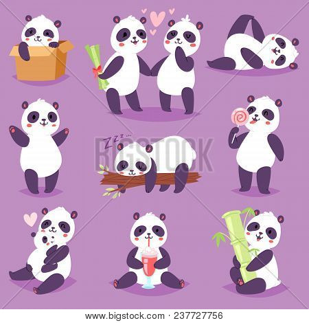 Panda Vector Bearcat Or Chinese Bear With Bamboo In Love Playing Or Sleeping Illustration Set Of Gia