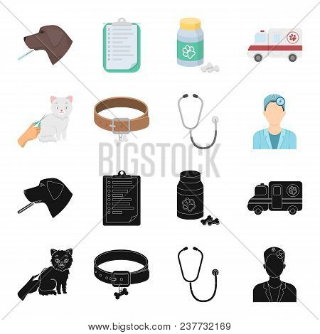 Collar, Bone, Cat, Haircut .vet Clinic Set Collection Icons In Black, Cartoon Style Vector Symbol St