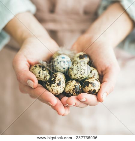 Natural Colored Eggs And Feather In Woman's Hands, Square Crop