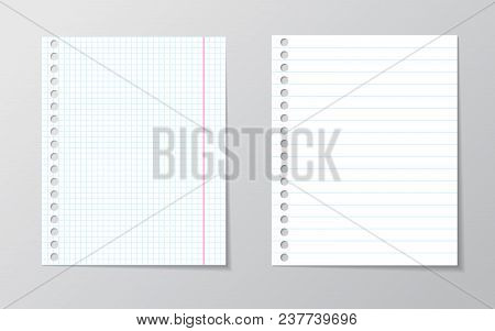 White Sheet Of Paper. School Notebook Paper Sheet. With Blue Line Book Page Background. School Note