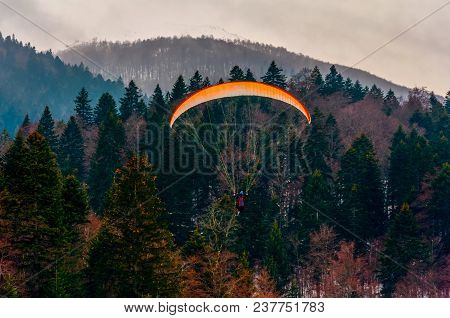 Parachute Flying Above The Pine Trees In Bosnia And Herzegovina