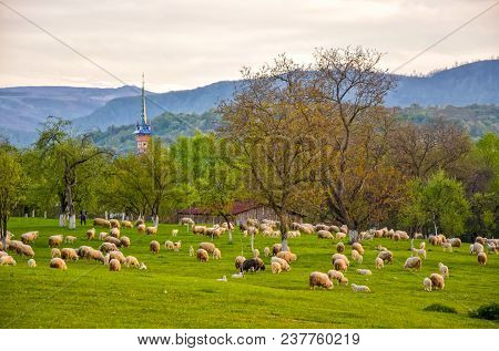 Scenic Spring Rural Landscape With Mountains And Traditional Maramures Neo-gothic Church On Backgrou
