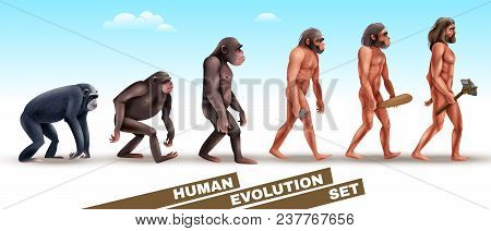 Human Evolution Set Of Characters From Primates To Homo Sapiens On Blue Sky Background Vector Illust