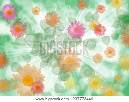 Floral Colorful Background, Abstract Illustration, Use For Design Holiday Cards, Mothers Day, Birthd