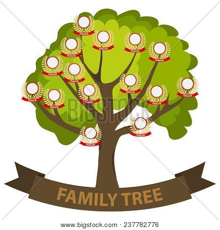 Genealogy Tree, Family Tree With Family Members. Flat Design, Vector Illustration, Vector.