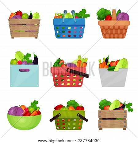 Set Of Wooden Boxes, Bowl, Containers, Shopping And Picnic Baskets With Fresh Vegetables. Natural An