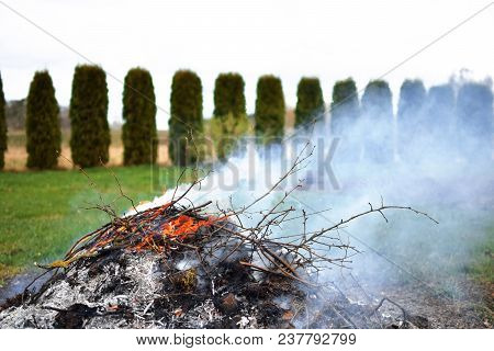 Burned Campfire And Smoke With Burning Brushwood, Dry Leaves And Ashes In Green Garden Grass In Spri