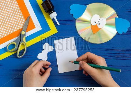 Child Makes Bird From Cd. Step 9