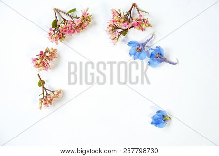 Wildflowers On White Paper. Flower Concept. White Background