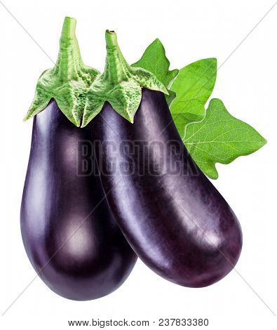 Aubergines or eggplants with eggplant leaf white background. File contains clipping path.