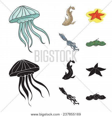 Jellyfish, Squid And Other Species.sea Animals Set Collection Icons In Cartoon, Black Style Vector S