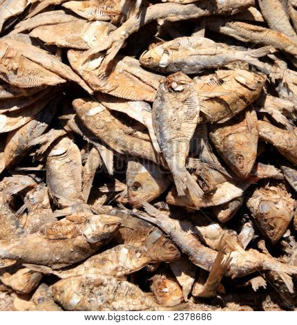 Pile of dried fish on a Typical Market day in camp Robin Madagscar poster