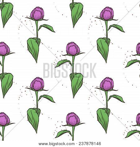 Vector Color Seamless Pattern Of Peony Flowers, Hand Drawn Sketch