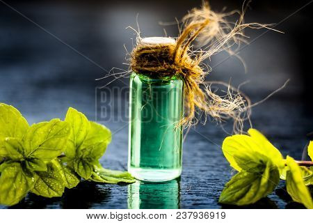 Mint Or Mentha Or Pepper Mint Essence On Wooden Surface With Raw Organic Mint Leaves Used As A Flavo