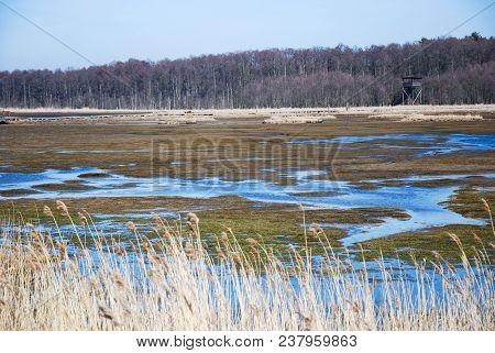 Wetland At Beijershamn On The Swedish Island Oland - A Famous Bird Watching Site