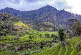 Bali: Pulau Bali, Provinsi Bali) Is An Island And Province Of Indonesia.