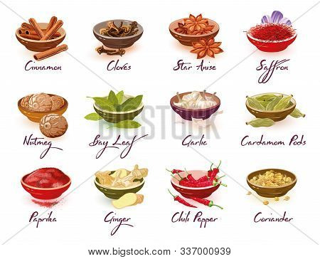Big Vector Set With Different Kinds Of Spices, Herbs, Condiments, Additives Cinnamon, Nutmeg, Paprik