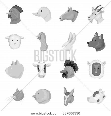 Vector Design Of Countryside And Homestead Icon. Collection Of Countryside And Breeding Stock Vector