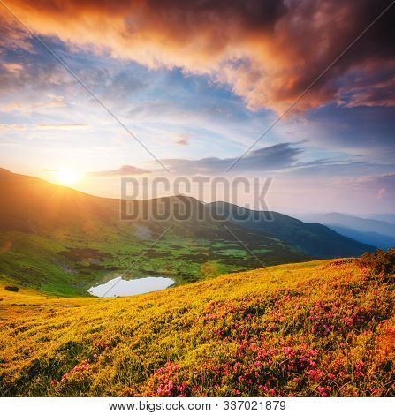 Pictorial mountains are illuminated by the evening light. Location place of Carpathian national park, Ukraine, Europe. Wild environment. Splendid natural wallpaper. Discover the beauty of earth.