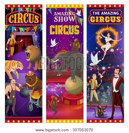 Circus Entertainment Show Banners, Wild Animals Tamer With Lion In Fire Ring And Elephant Balancing