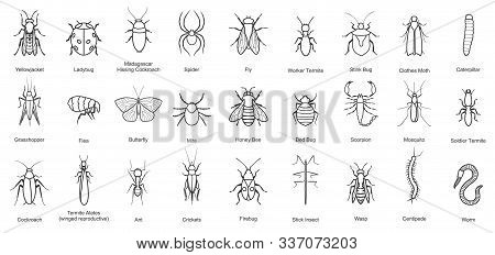 Bug Of Insect Vector Line Set Icon.vector Illustration Insect Beetle. Isolated Line Icon Bug And Fly