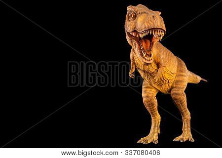 Tyrannosaurus Rex ( T-rex ) Is Walking And Open Mouth And Copy Space On Left Site . Front View . Bla