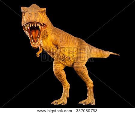 Tyrannosaurus Rex ( T-rex ) Is Walking And Open Mouth . Front View . Black Isolated Background . Din