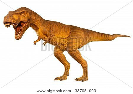 Tyrannosaurus Rex ( T-rex ) Is Walking And Open Mouth . Side View . White Isolated Background . Dino