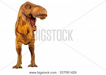 Tyrannosaurus Rex ( T-rex ) Is Walking And Open Mouth And Copy Space On Right Site . Front View . Wh