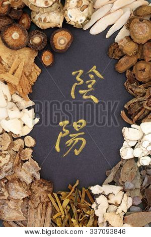 Chinese herbs used in traditional herbal medicine with yin and yang herbs and calligraphy script. Translation reads as yin yang. Oriental health care concept.
