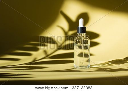 Cosmetic Bottle With Pipette. Transparent Liquid Product In Glass Bottle With Dropper. Serum Skin Ca
