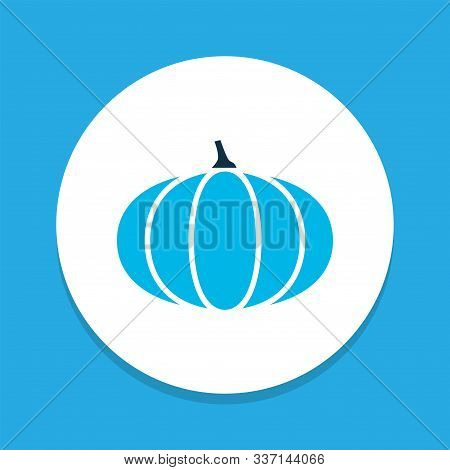 Pumpkin Icon Colored Symbol. Premium Quality Isolated Gourd Element In Trendy Style.