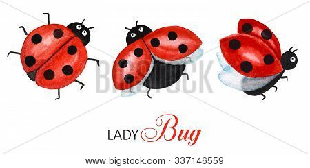 Watercolor Ladybug Set, Flying Bright Cartoon Insects. Funny Red Ladybird In Flight. Greeting Card C
