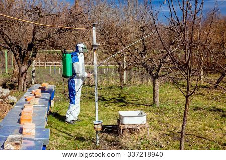 Farmer In Protective Clothing And Gas Mask Sprays Of Fruit Trees In Orchard Using Long Sprayer To Pr