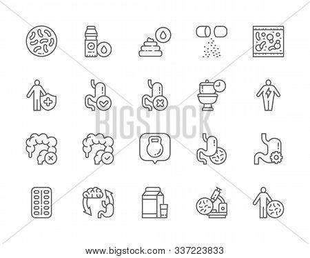 Set Of Probiotic Line Icons. Lactobacilli, Bifidobacteria, Vitamins And More.