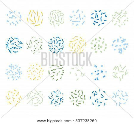 Vector Isolated Illustration Of Most Common Pathogenic And Beneficial, Bad And Good Bacteria. Human